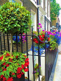 London Bloomsbury Travel guide Bloomsbury A Square Mile