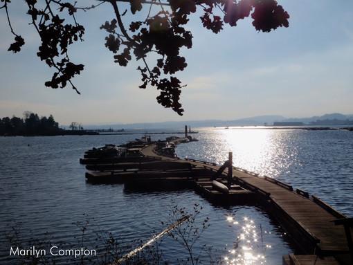 mud bay dock