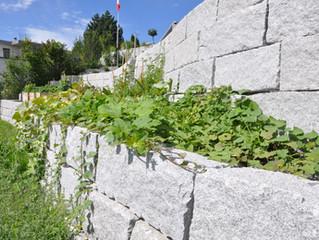 Granitmauer Hombrechtikon