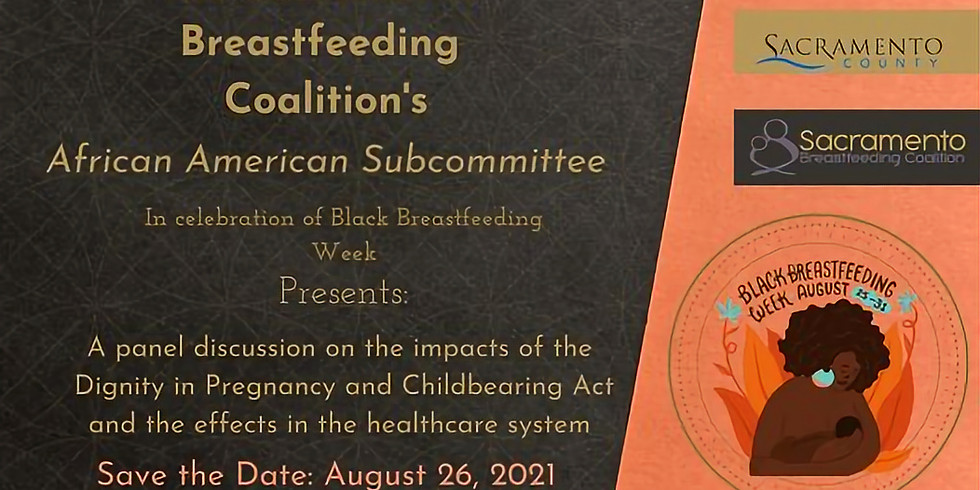 Black Breastfeeding Week Panel Discussion