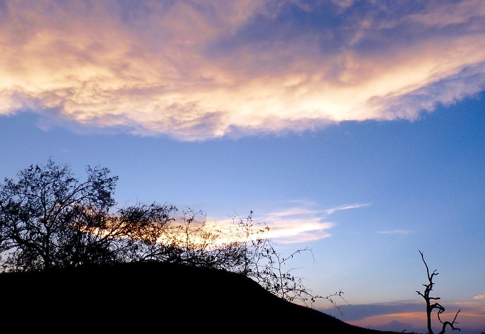 #Sunset at #Madikwe Game Reserve, #SouthAfrica