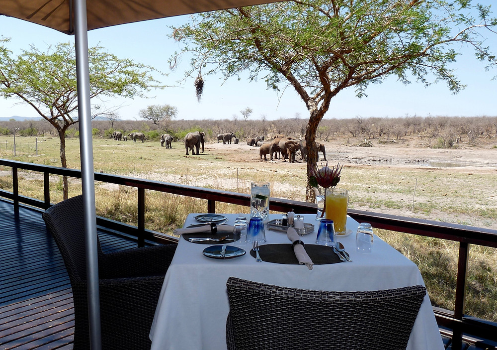 Breakfast on #safari at #JamalaMadikwe