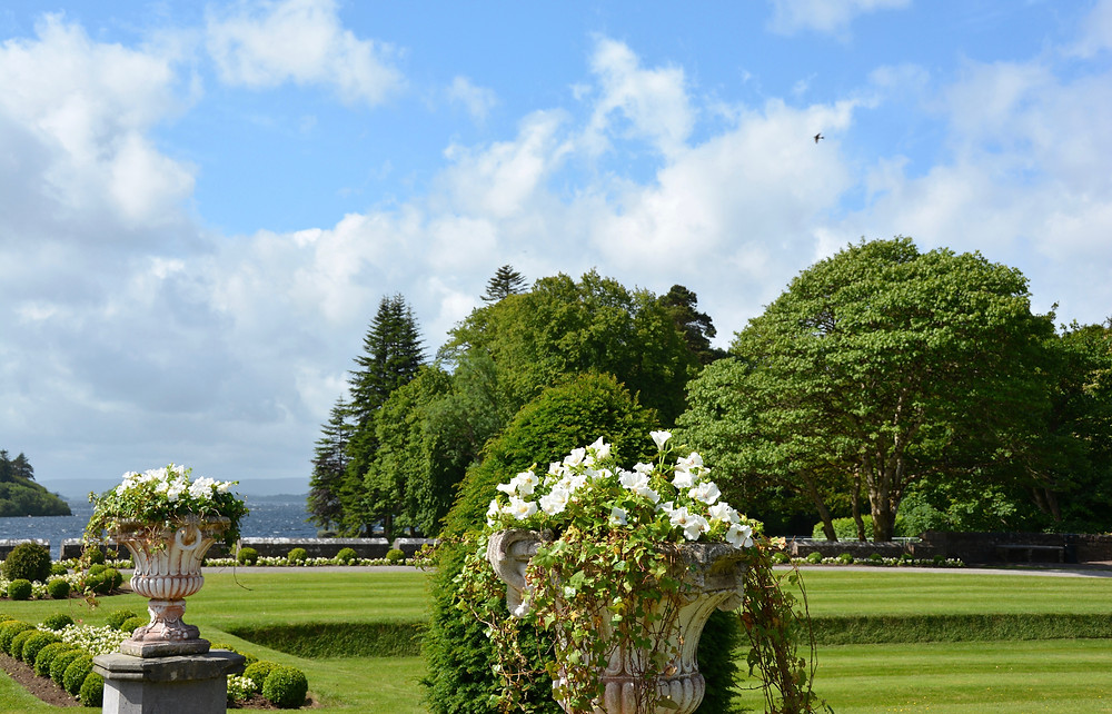 Ashford Castle grounds in summer