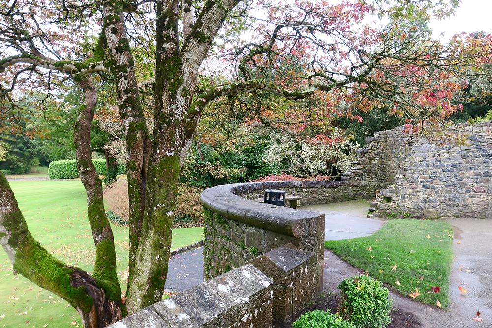 Ashford Castle grounds in fall