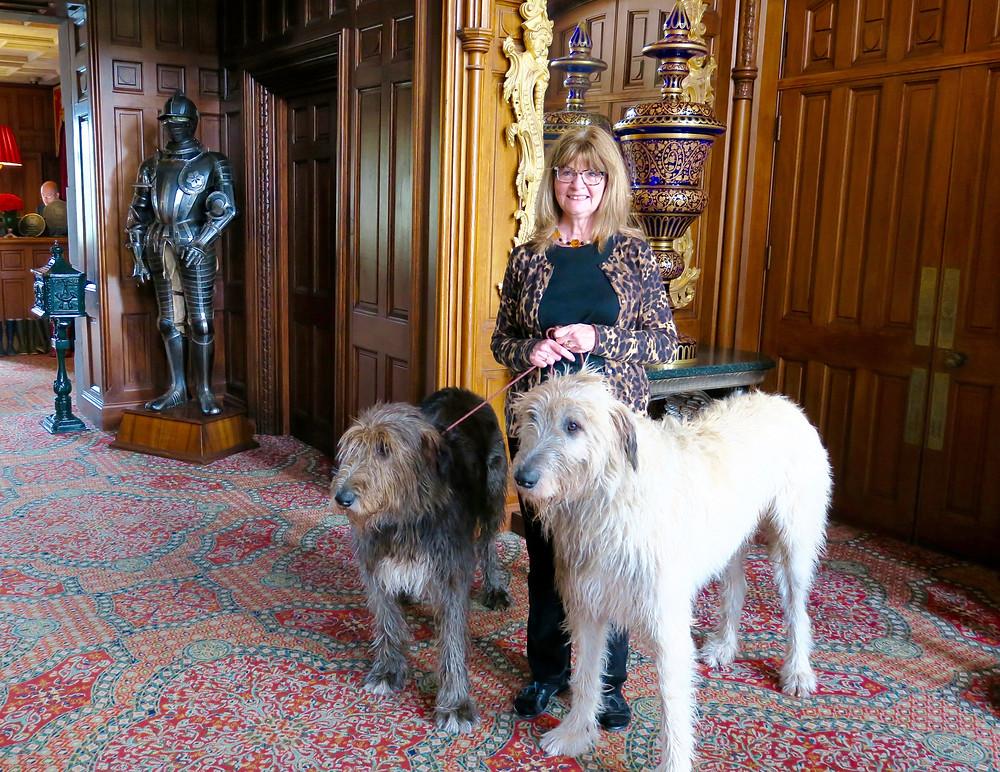 Ashford Castle's Irish Wolfhounds