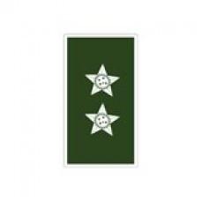 Divisa Gola 1º Tenente