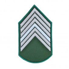 Divisa Bordadad 1º Sargento Verde Oliva