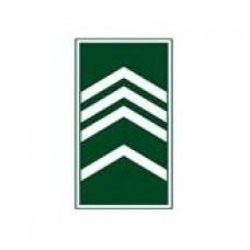 Divisa Gola 2º Sargento