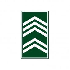 Divisa Gola 1º Sargento