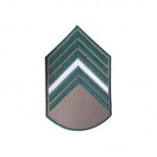 Divisa Bordada 1° Sargento Bege
