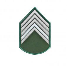 Divisa Bordadad 2º Sargento Verde Oliva