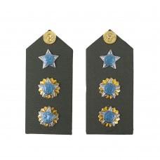 Platina de Tenente Coronel