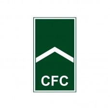 Divisa Gola Soldado CFC EP