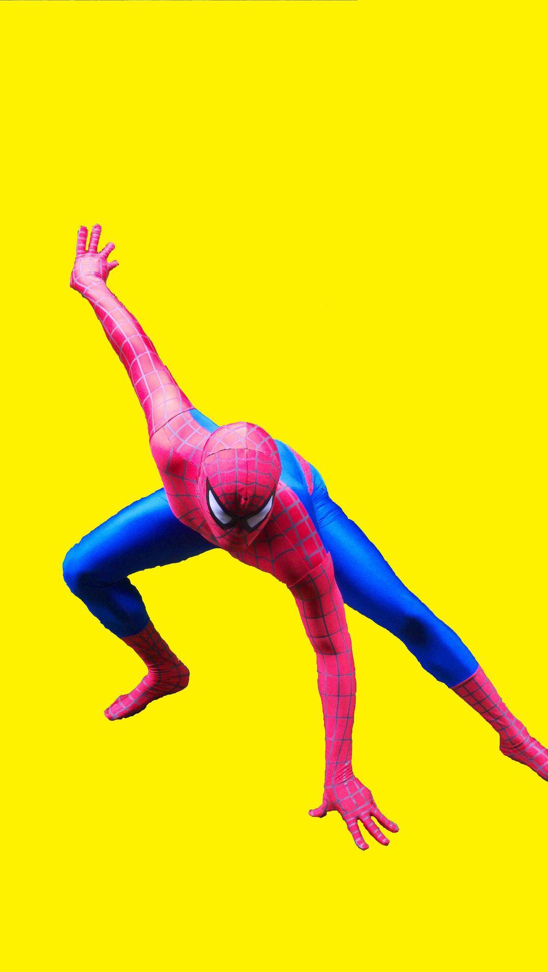 Mr.Spider