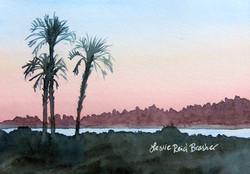 Three Palms Sunset
