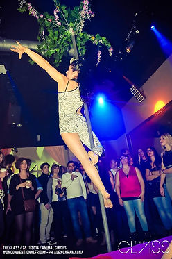 POLE DANCE,DANZA ACROBATICA,SPETTACOLO SUL PALO,DANCER,BALLERINA,DANZATRICE,DANZA,ACROBATA,SHOW,PERTICA,LAP,PALO,CINESE,CIRCO