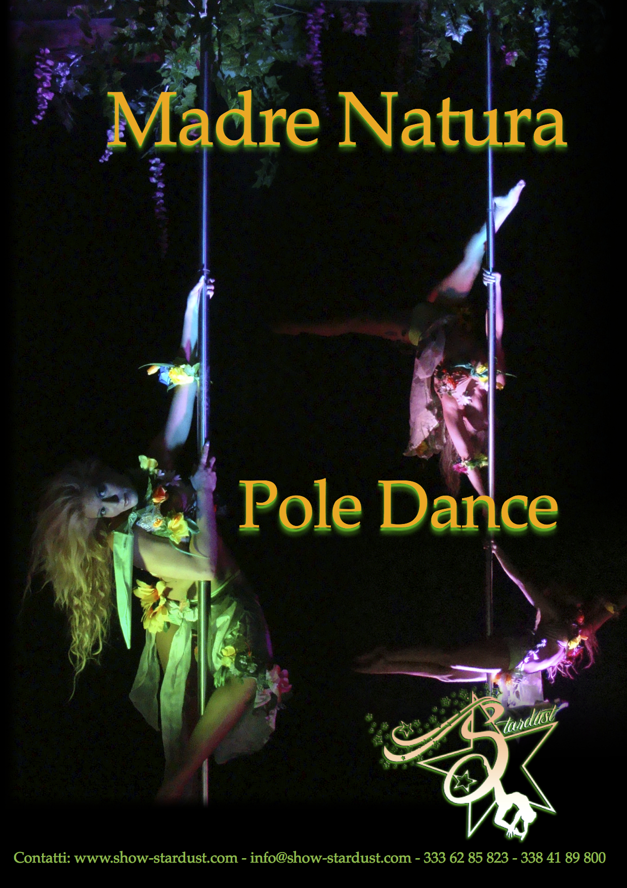 POLE DANCE ACROBATIC