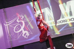 CIRCUS STARDUST SHOW