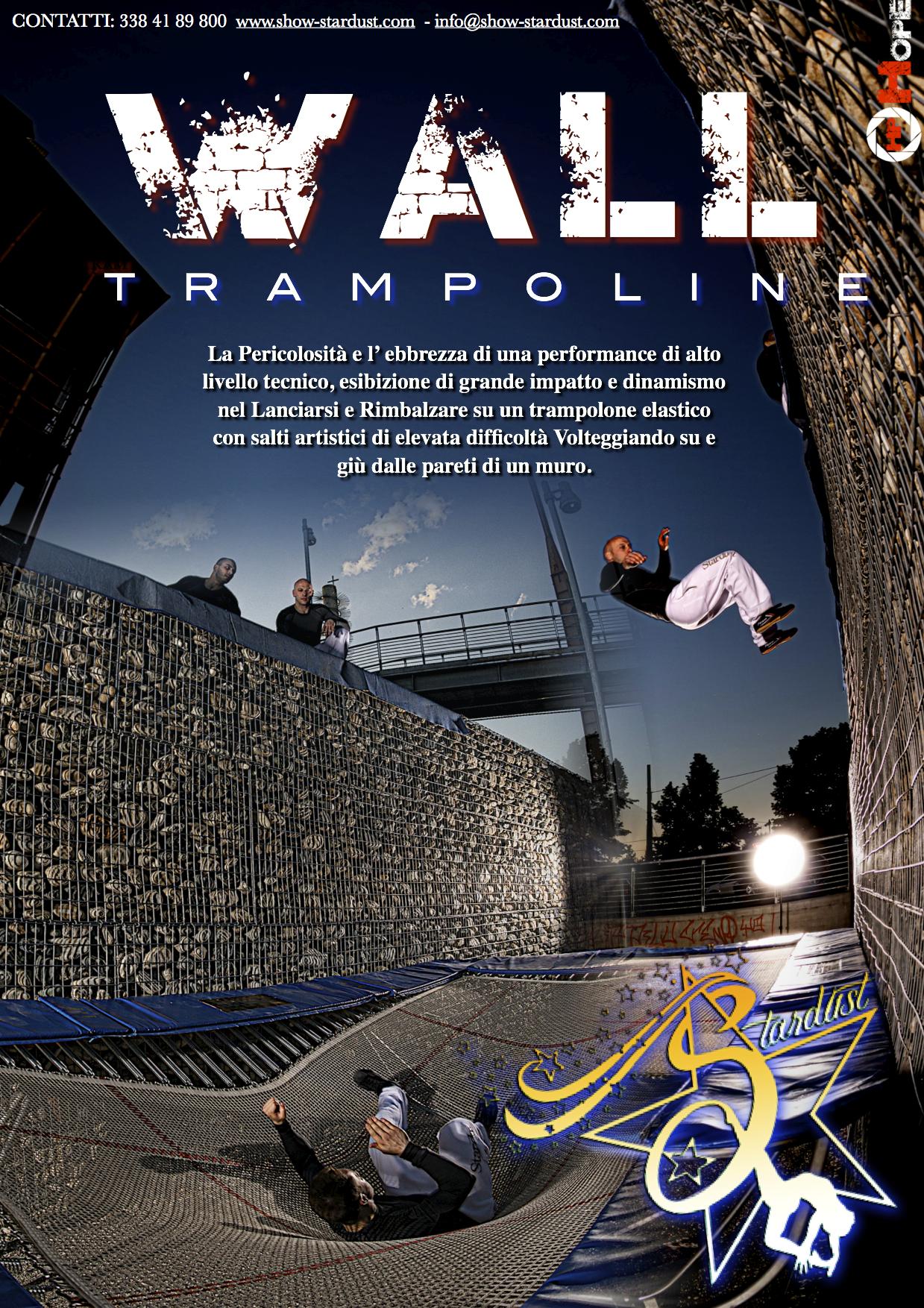 WALL TRAMPOLINE TRAMPOLINO ELASTICO