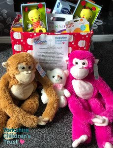Kip McGrath Toy Collection for Yorkshire Children's Trust