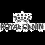 RC_logo_2016cmjn_edited.png