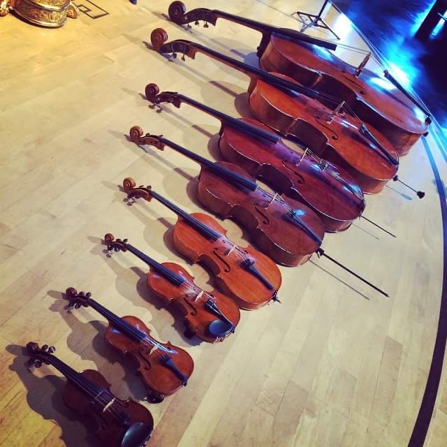 8 violins laid out