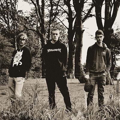 Cork band Ash Red