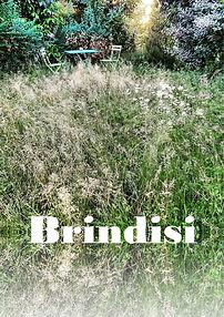 BRINDISI-scaled.jpg