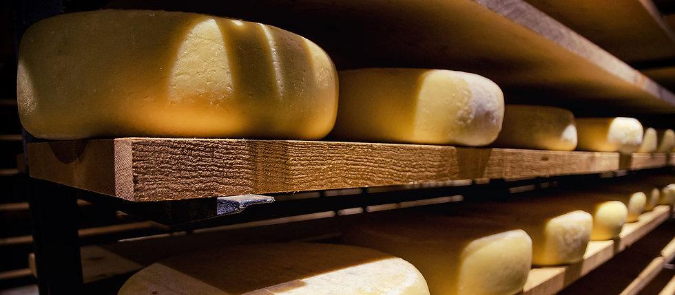 workshop-formaggi-piemonte.jpg