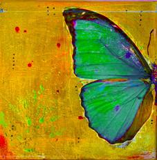 Greenbutterfly.jpg