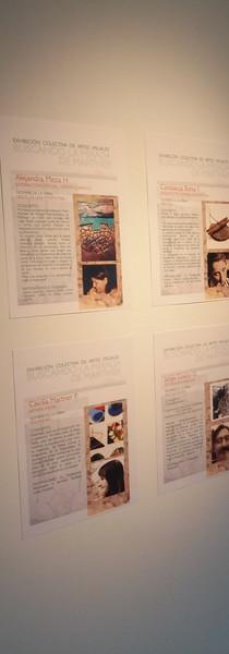Afiches y obras de artistas