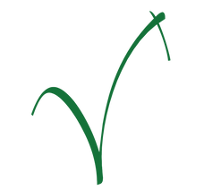 A bhvc logo.png