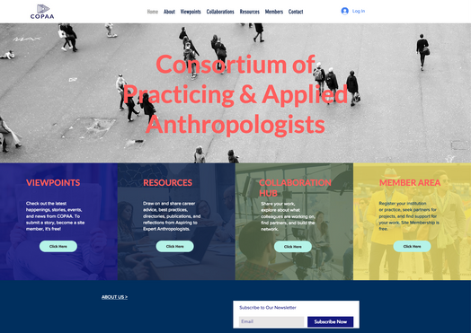 Consortium of Practicing and Applied Anthropologists