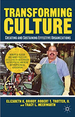 Transforming Culture: Creating and Sustaining Effective Organizations