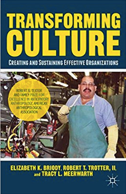 Transforming Culture: Creating and Sustaining Effective Organizations by Briody, Elizabeth, Robert Trotter II, and Tracy Meerwarth. 2014. New York: Palgrave.