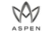 aspen_edited.png