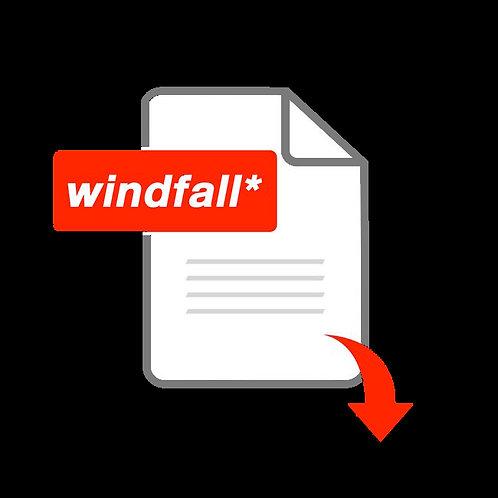 Windfall* Issue 1 | Digital Copy