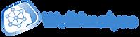 wellanalyse logo_.png