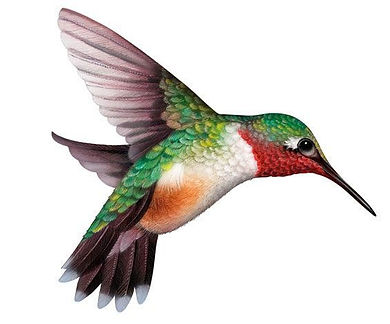 hummingberg.jpg
