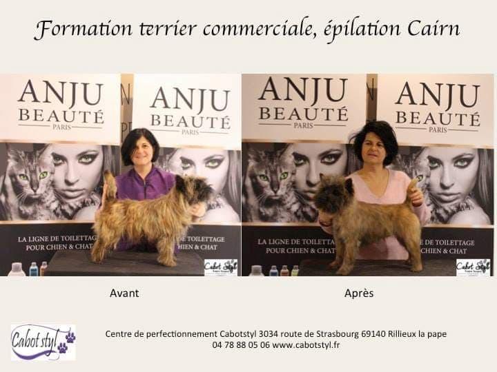 toutoucoiff mulhouse (2)