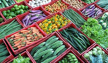 vegetables_b.jpg