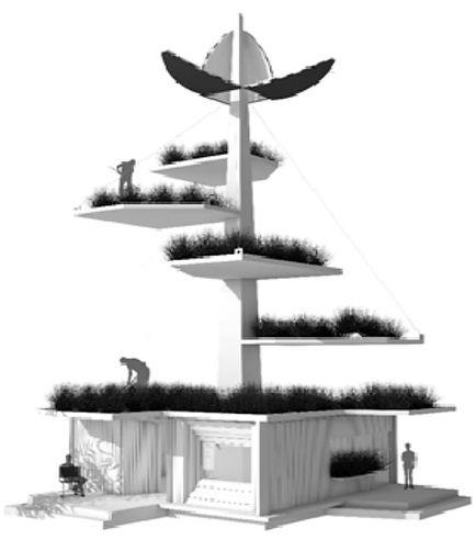 ALI structure.jpg