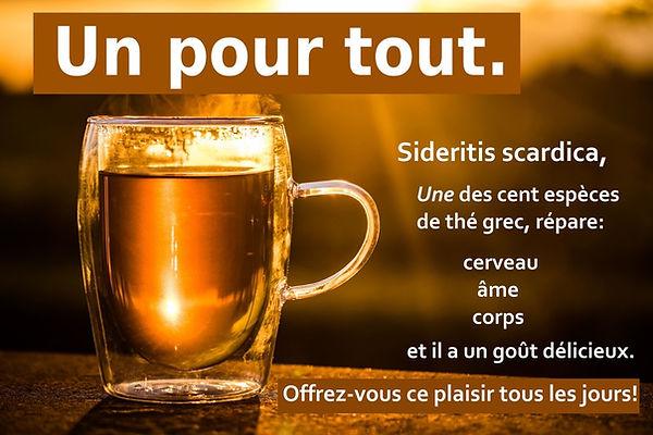 thé grec des montagnes