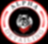 Alpha Detailing Logo .png