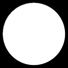 白丸.png