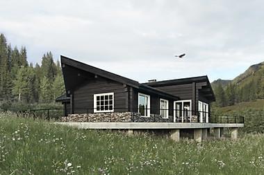 визуализация экстерьера Дома на Алтае