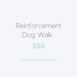 Reinforcement Dog Walk
