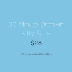 30 Minute Drop-in Kitty Care