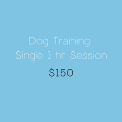 Dog Training Single Session