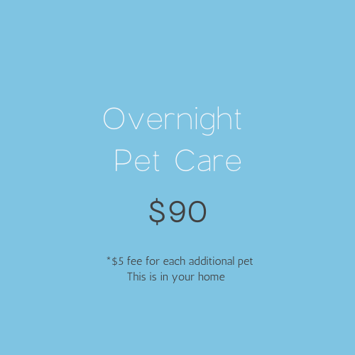 Overnight Pet Care